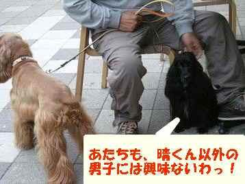 Photo_172